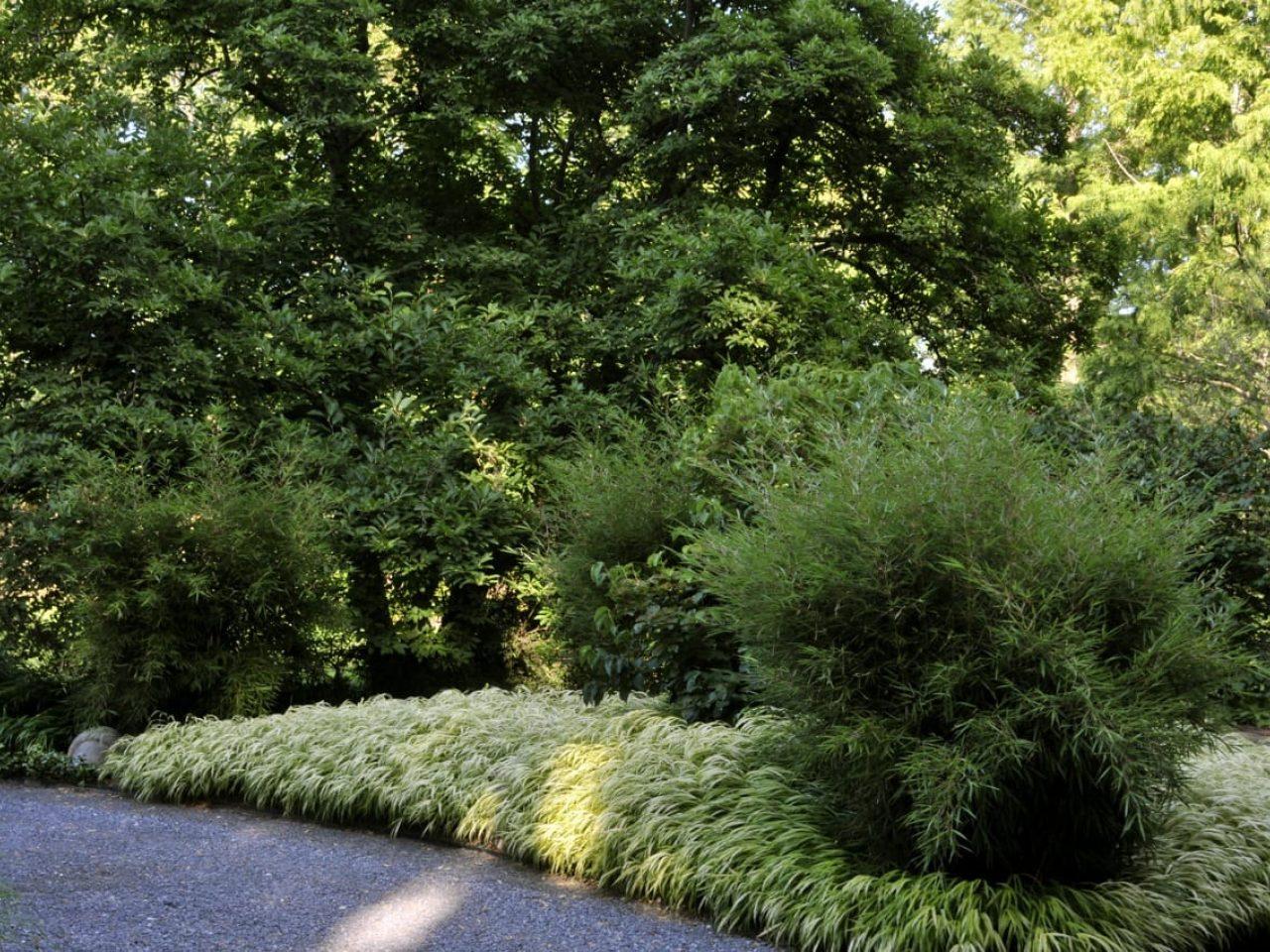 Web Berm Garden