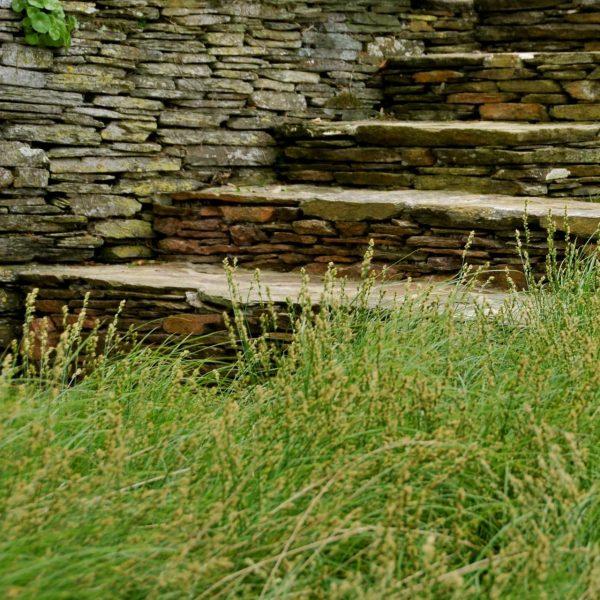 Web Ayrmer Path Thumbnail